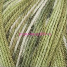 YarnArt CRAZY COLOR 115 зеленый принт